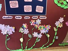 English wall comes into full bloom