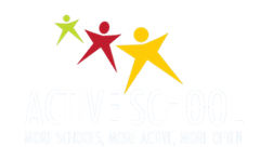 The Post-Primary Active School Flag